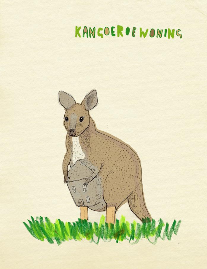 kangoeroeweb