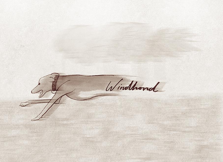 windhondflatweb