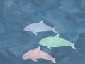 porpoises2