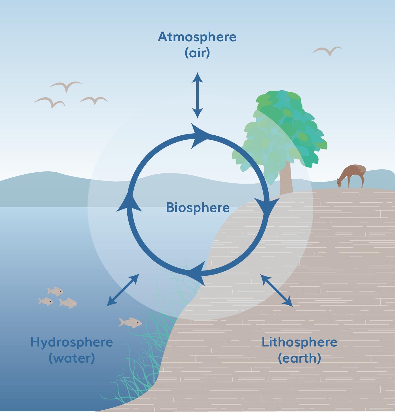 hydrospherep5